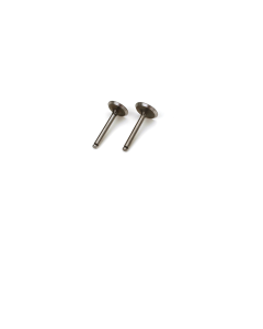 1 Pair Valve (in & out) SAI5046